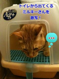 090925machiko3.jpg