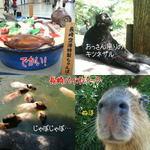 100916nagasaki.jpg